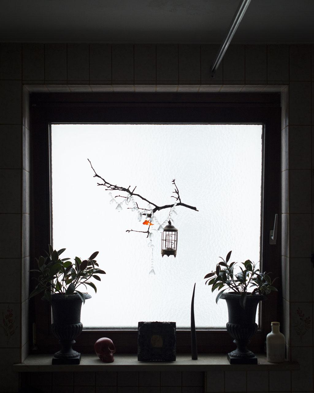 Meinhard window