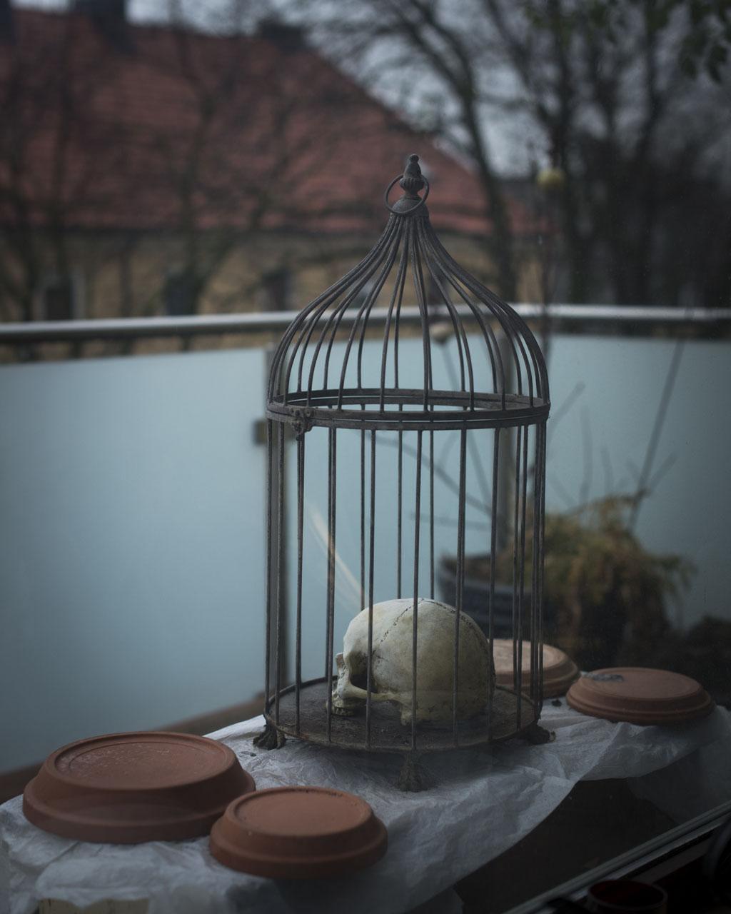 Meinhard cage